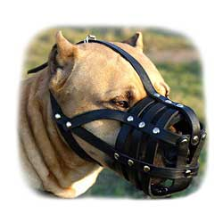 Gorgeous Comfort Padde Leather K9 Dog Muzzle