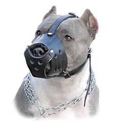 K9 (Canine) Dog Breeds Light Leather Muzzle Easy  Training