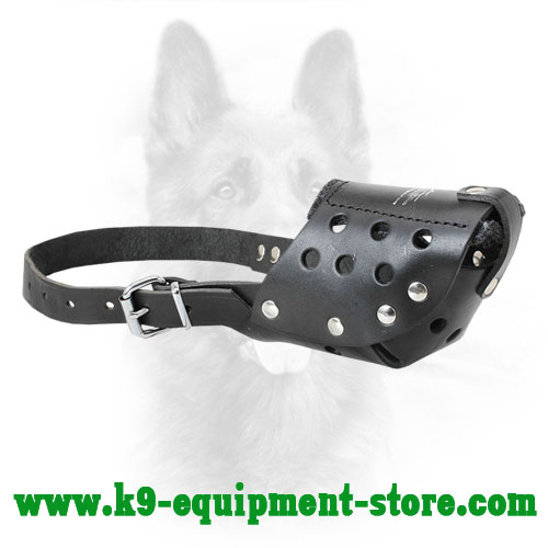 Leather Canine Muzzle with Easily Adjustable One Strap