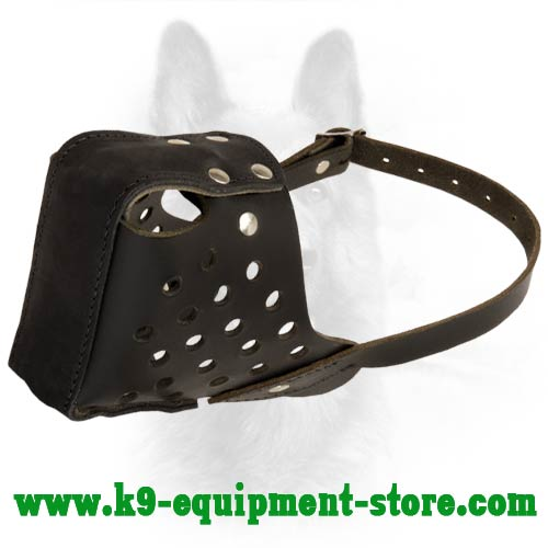 Canine Leather Dog Muzzle Padded in Nose Area