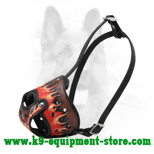 Leather Canine Muzzle with Attactive Painting