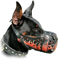 Specially Colored In Flames Multi-Purposed Leather K9  Dogs Muzzle