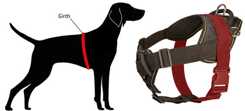 how-to-measure-harness