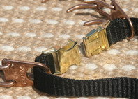 prong dog collar with loop
