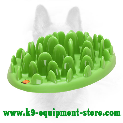 Big Green Lawn Feeder for Canine Harmless Eating